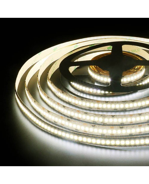 Лента светодиодная PREMIUM SMD3528 240 19,2W  24V дневная белая BLS